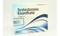 Тестостерон Енантат (Pacific Pharma)