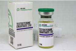 Testosterone Enanthate (Biotech Beijing) 10 ml