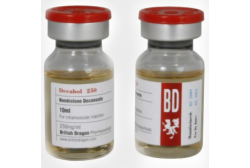 Decabol (British Dragon) - Нандролон 250мг/мл