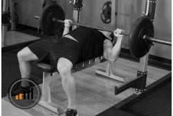 стероиден цикъл за сила: начинаещи